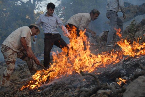 فرماندار کهگیلویه: فعالیت ۱۰۰ اکیپ برای مهار آتشسوزی جنگل کوه «سمر»